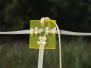 2008-Antennemeetdag