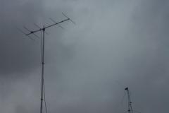 2013-03-COTA-088.JPG