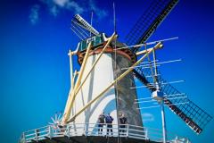 2019-05-11-Molendag-01